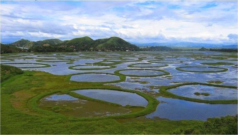 लोकतक झील – इम्फाल – दुनिया की एक मात्र तैरती झील – wikinow