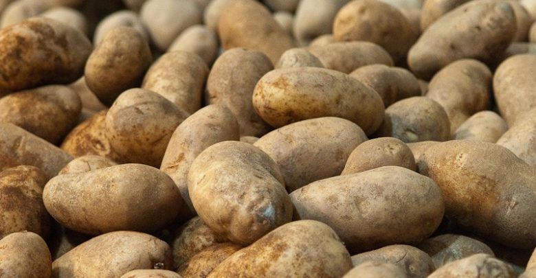 How To Store Potatoes? | Wikinow